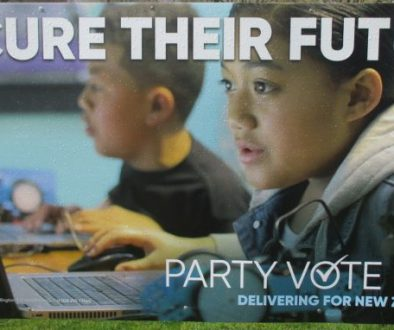 2017-National-PartyVote-SecureFuture2-768x382